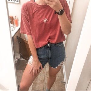 comfort color brick red t-shirt daisy tee Large